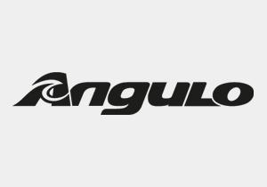 logo-angulo